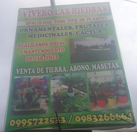 Vivero Las Hiedras