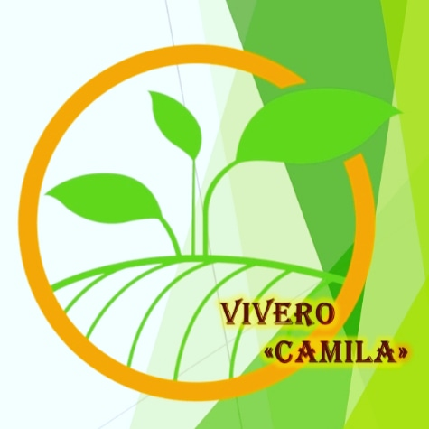 Vivero Camila