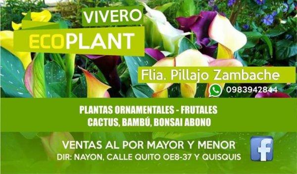 Vivero EcoPlant