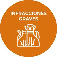 Infracciones Graves - Tenencia, Proteccióny control de la Fauna Animal