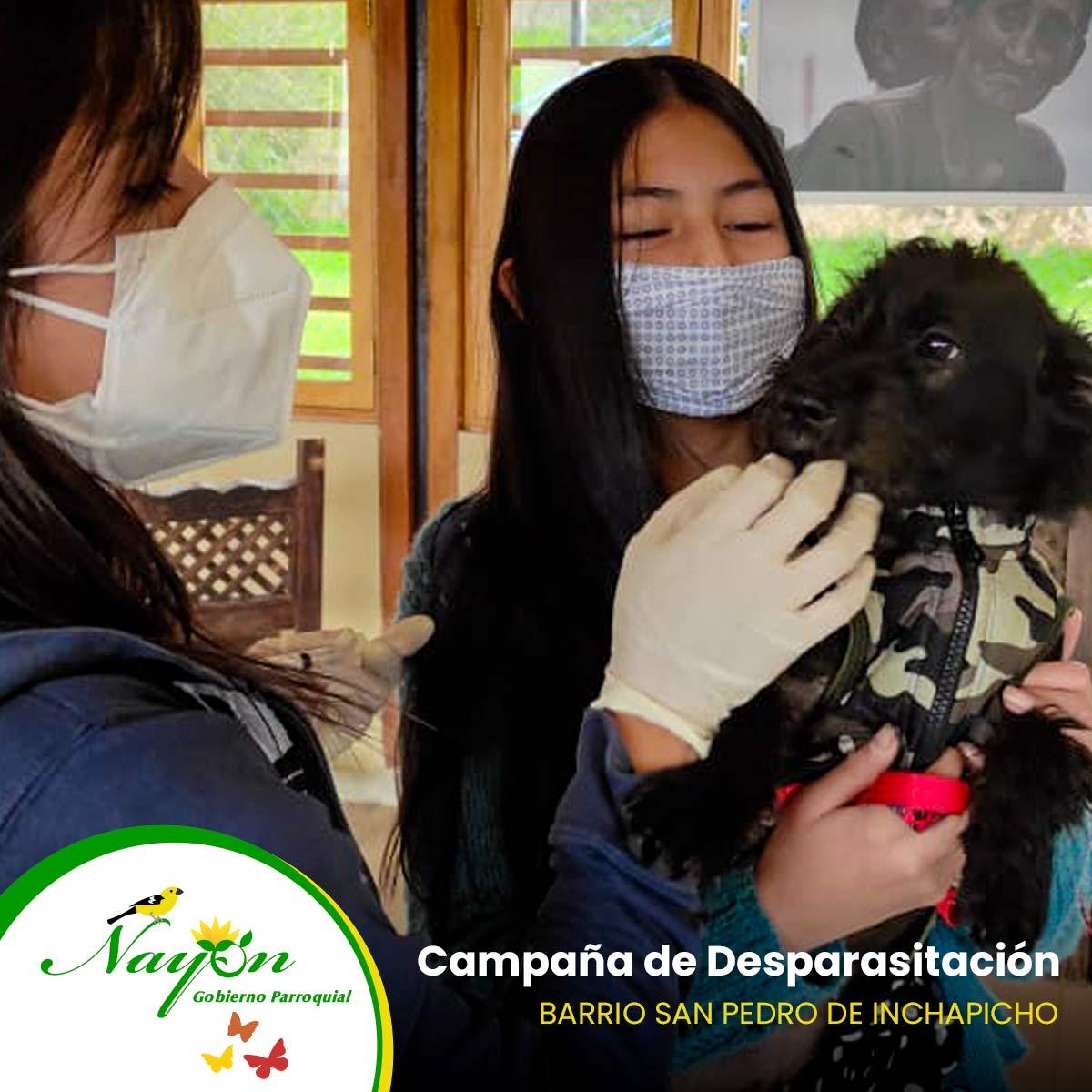 Campaña de Desparasitación - Barrio San Pedro de Inchapicho